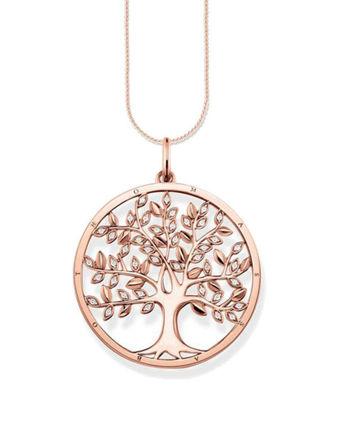 Thomas Sabo Tree Of Love Kolye Ucu PE759-416-14