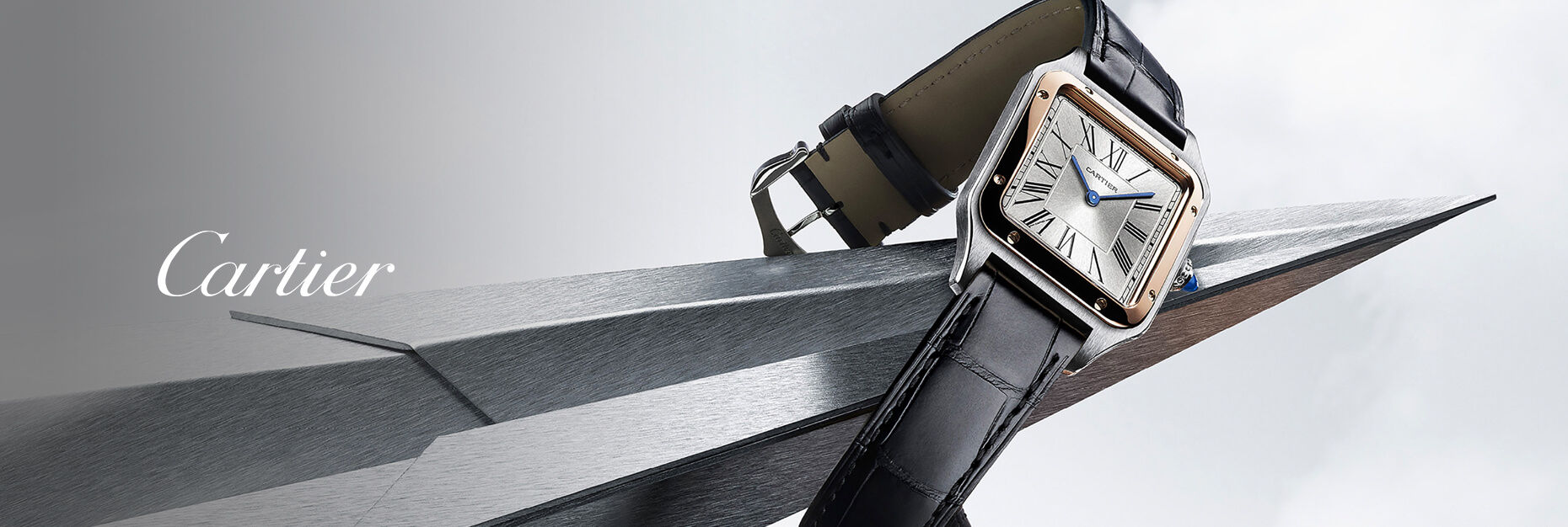 Cartier Santos Collection