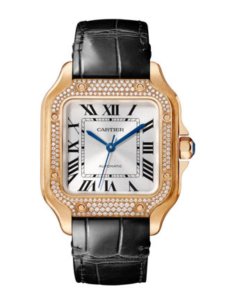 Cartier Santos De Cartier WJSA0012